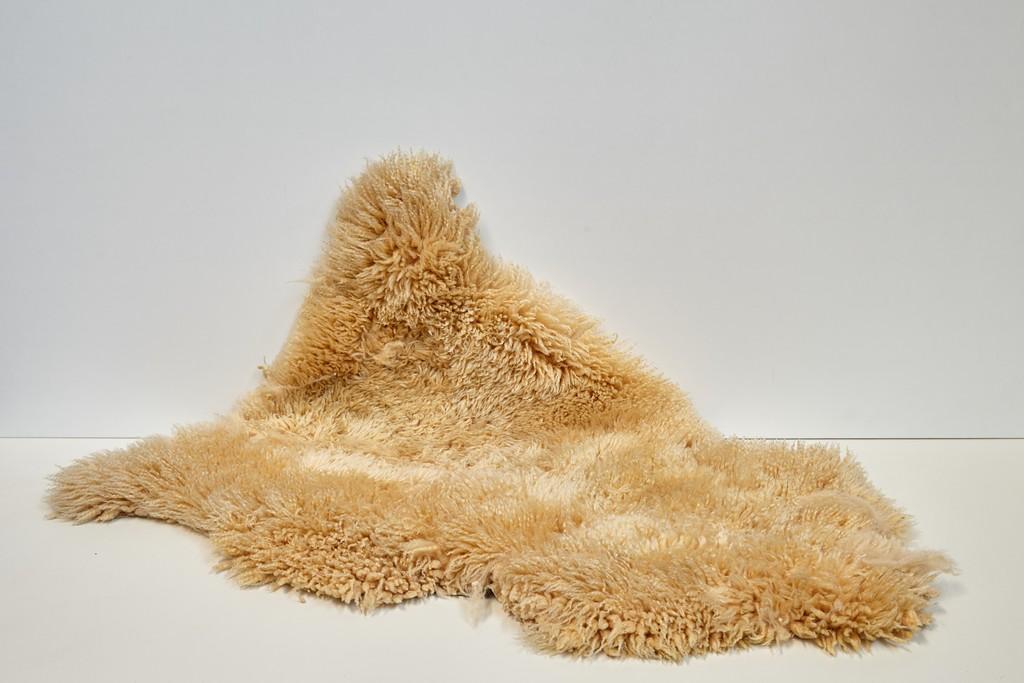 schapenvel-geelbruin-3178